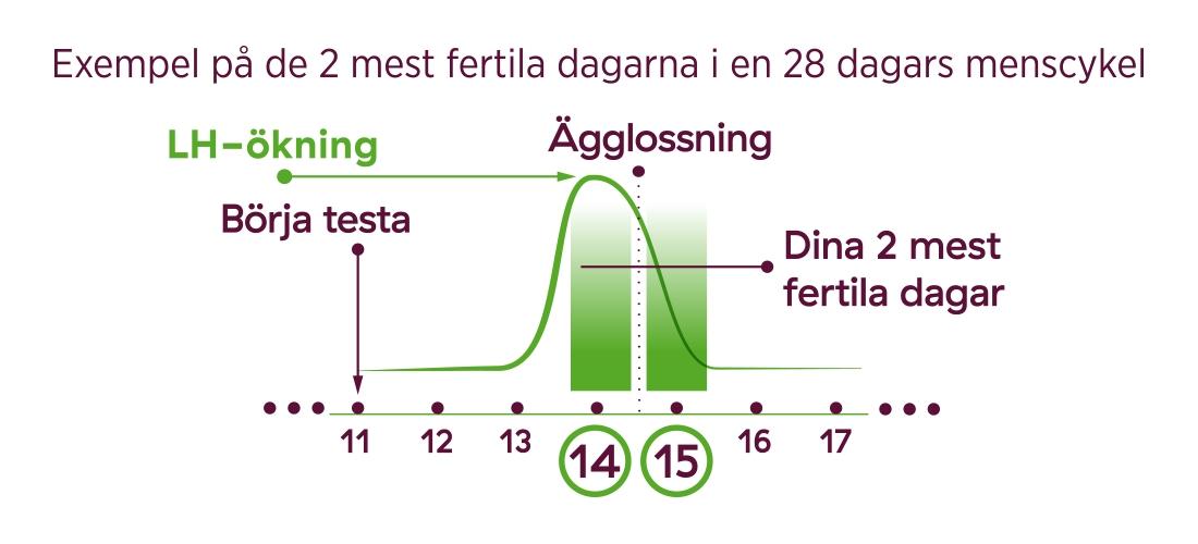 när sker ägglossning efter lh stegring